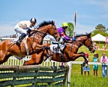 Charlottesville Alumni Chapter: Foxfield Fall Races
