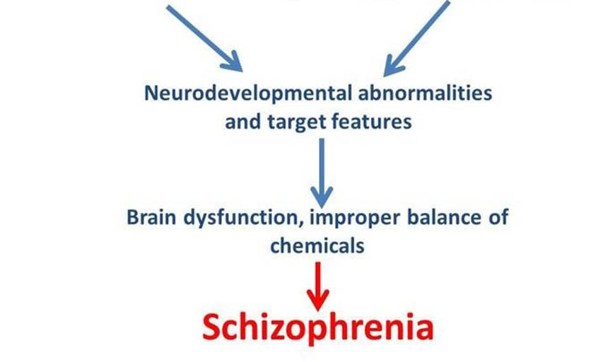 """Evolution of Schizophrenia"" By RC Alum Dr. Cullen Truett"