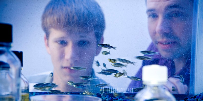 Chris Lassiter looking in a fish tank with a student