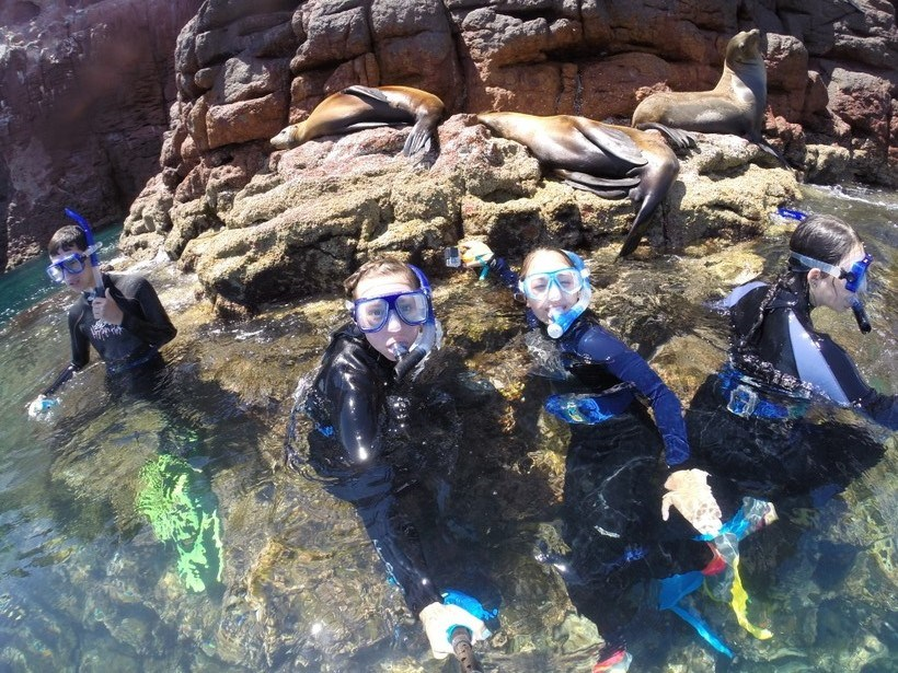 Students above water level after snorkeling