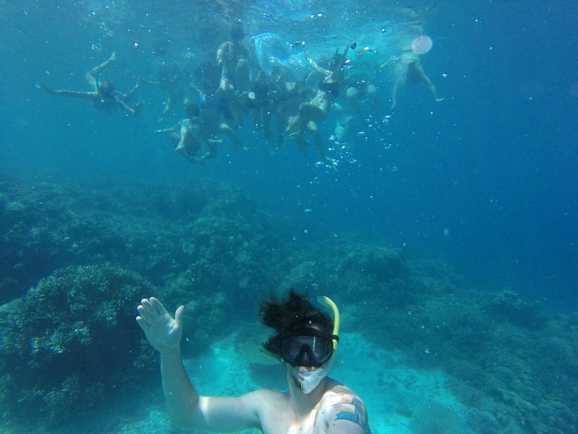 Students snorkeling