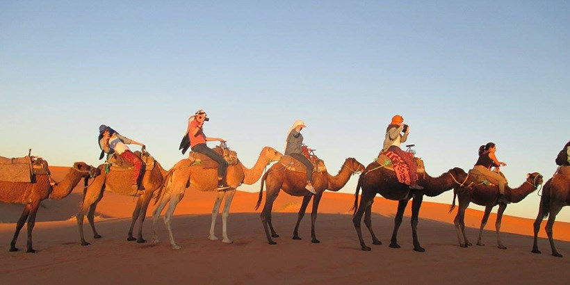 Students on camels in Morocco