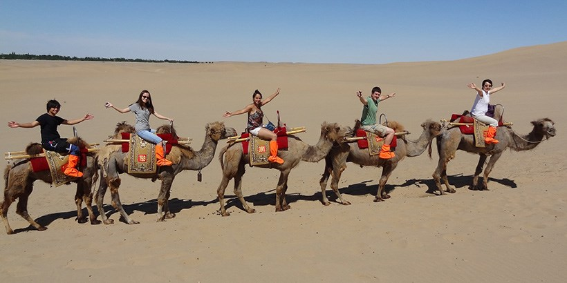 Professor Stella Xu and students on camels