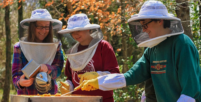 Beekeeping society taking care of their bees