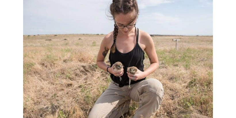 Julia Mello in the field with two baby owls