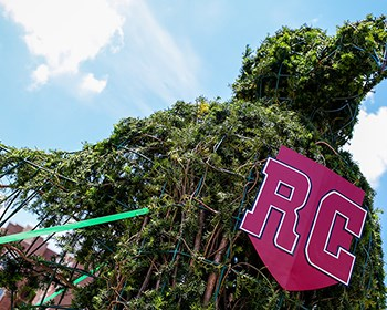 Rooney Topiary stands guard over Maroon Athletic Quad