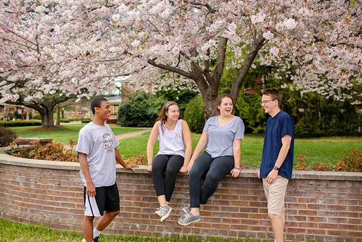 Photo of students in spring